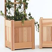 3 Pc. Planter Set with Trellis