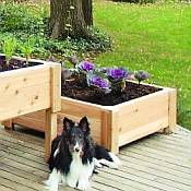 Square Wooden Planter Box - 15in Tall