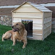 Cedar Dog House - Medium