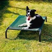 Medium Coolaroo Dog or Cat Bed