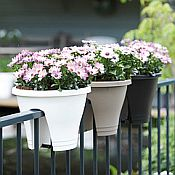 Corsica Flower Bridge Planter Set