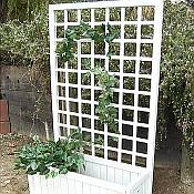Garden Planter Box with Trellis
