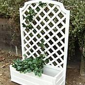 Rectangular Planter Box  with Trellis