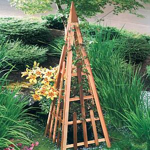 Garden Trellis - 81 inch Cedar Pyramid