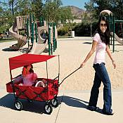 On The Edge Folding Wagon