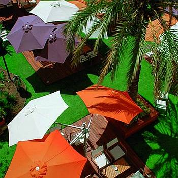 Paraflex Offset Umbrellas