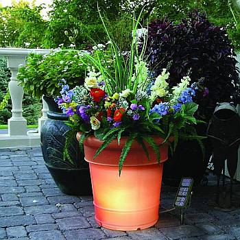 Solar Lighted Planters