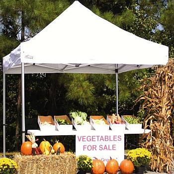 Shade Canopies: Versatile Outdoor Protection