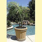 Kutstone Jumbo Roman Urn Planters