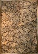 Capri Everywear™ Rug Tapestry Olive