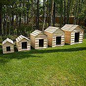 Cedar Dog Houses