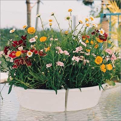 Ceramic Umbrella Planter Apcm940pw