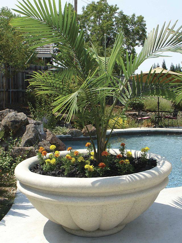 large trough garden planter extra deep trough wooden