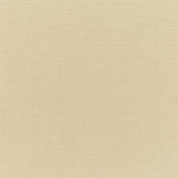 Sunbrella Antique Beige (5422)