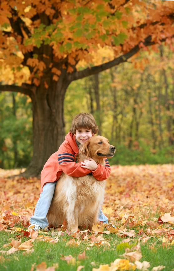 Boy Hugging Golden Retriever Outdoor Patio Ideas